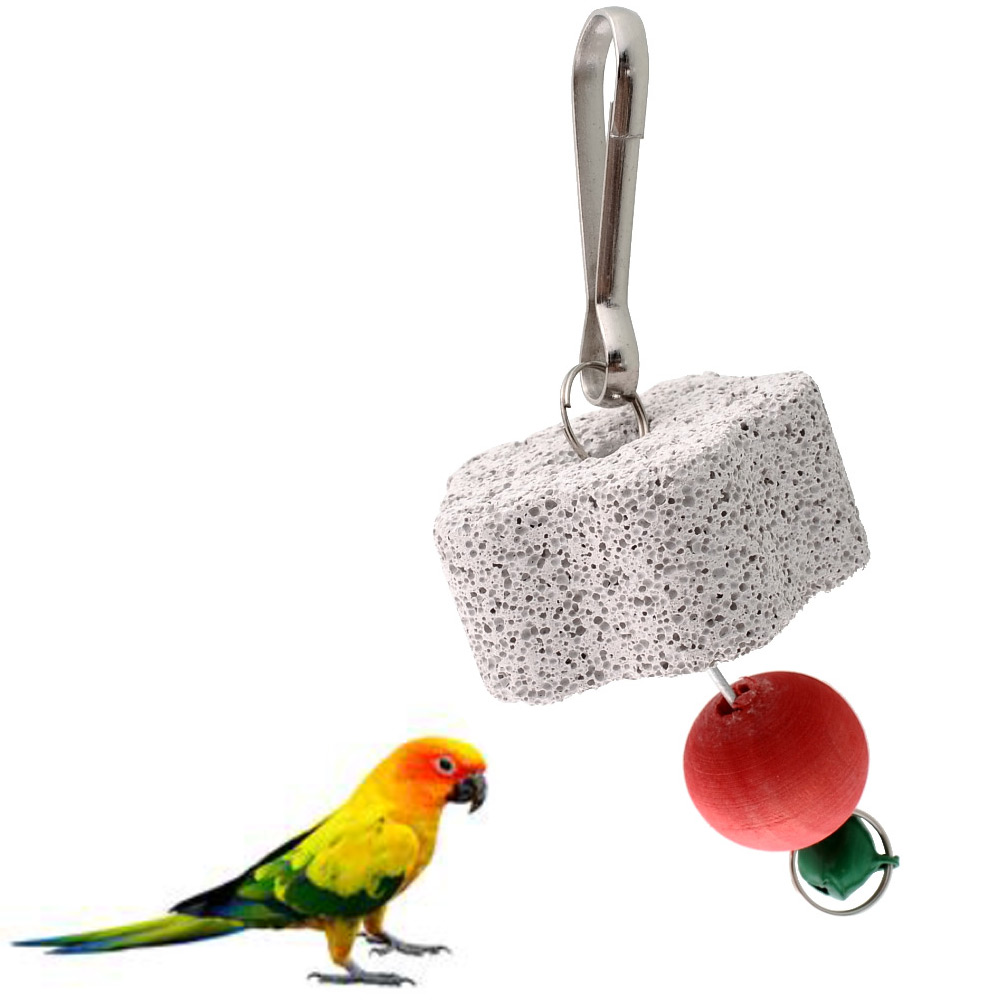 Parakeet Chew Toys : Parrot bird squirel rat chew bite scratcher bell toy teeth