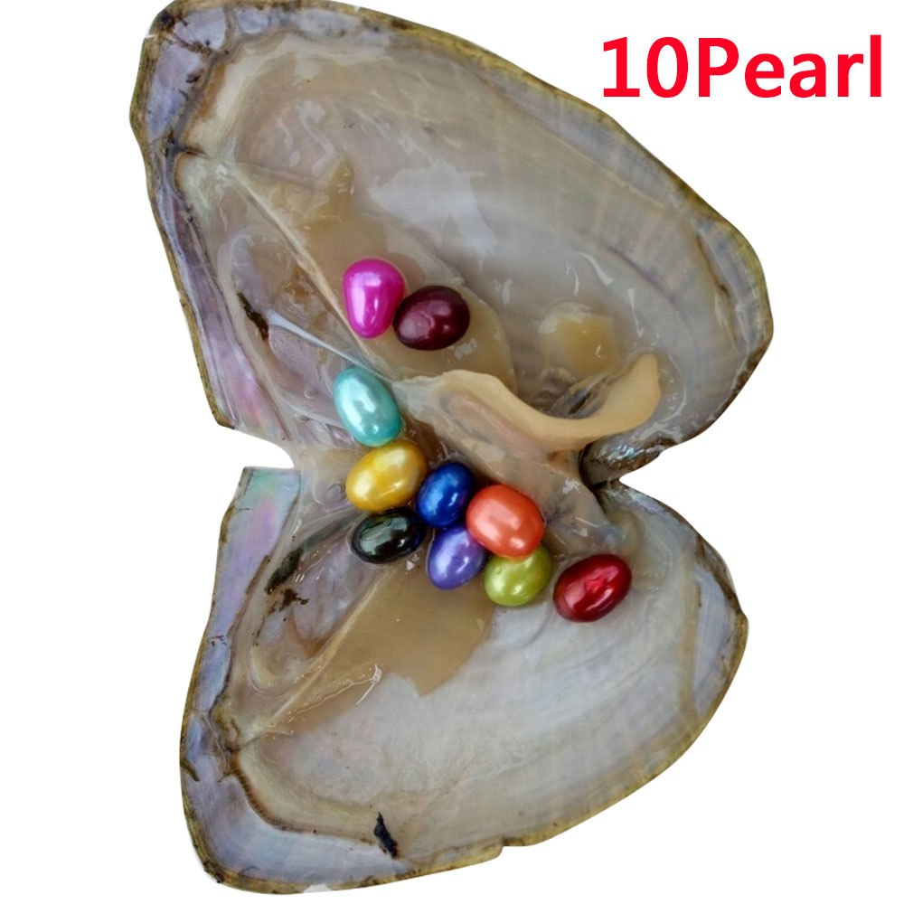 174C-6-10-20PCS-Individually-Wrapped-A-koya-Oysters-With-Large-Pearls-6-8mm