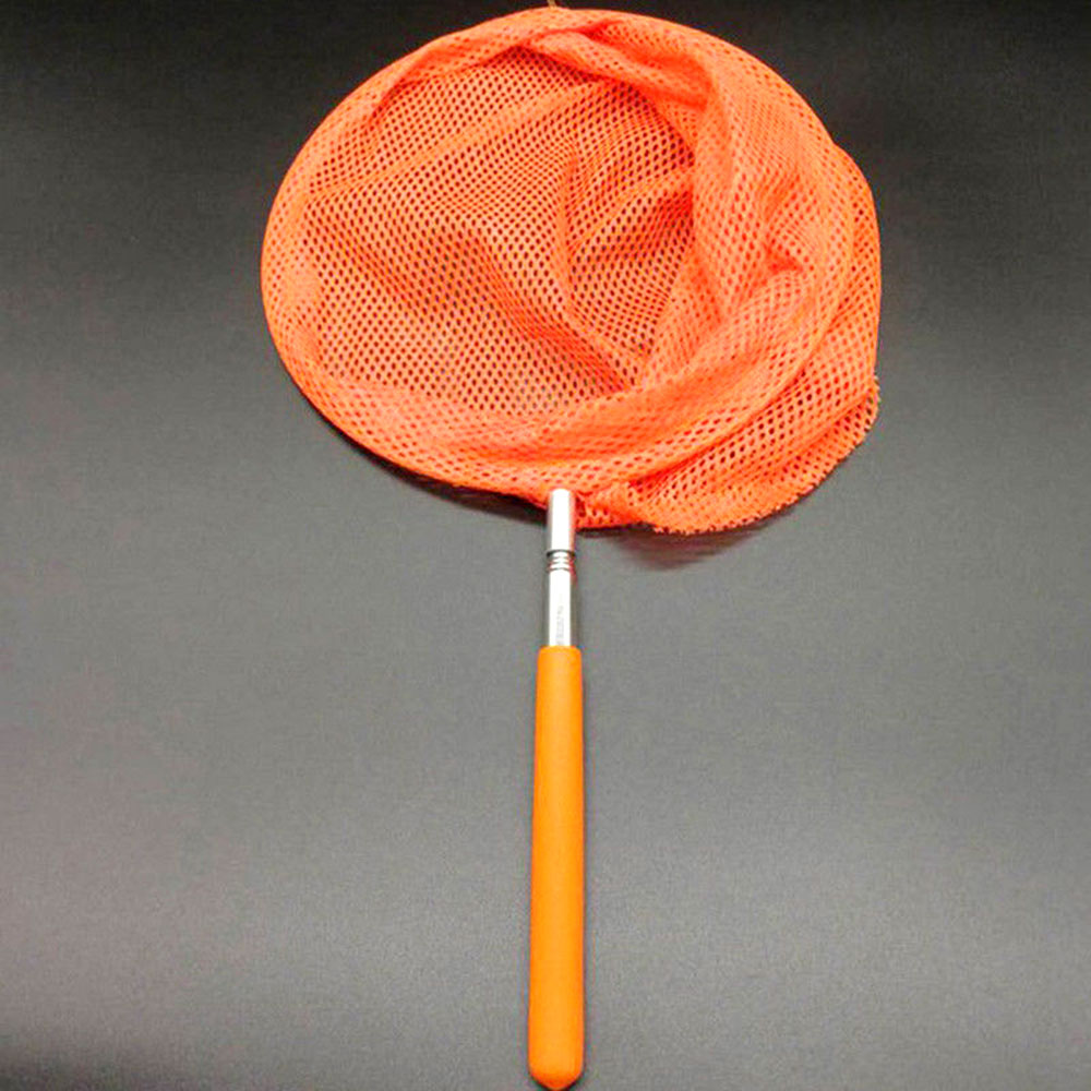37CA-Childs-Extendable-Fishing-Butterfly-Insect-Net-Telescopic-Handle